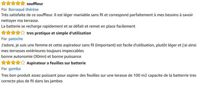 avis aspirateur souffleur sans fil black et decker GWC3600L20
